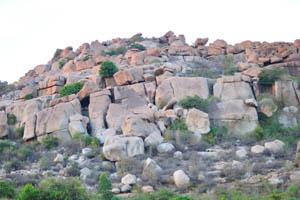 Обыкновенный каменистый ландшафт в Хампи