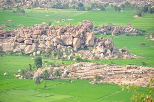 Каждое место между скалами засажено рисом