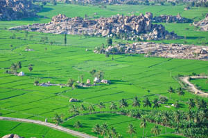 Самая зелёная фотография в Индии