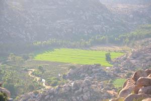 Квадратное рисовое поле между холмами