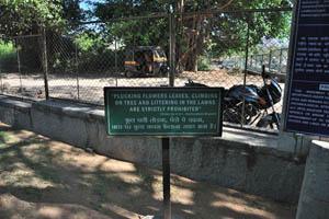 Выдёргивание цветов, лазание по деревьям и засорение газонов строго запрещены