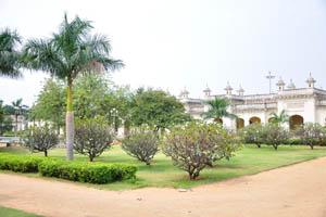 Сад дворца украшен королевскими пальмами
