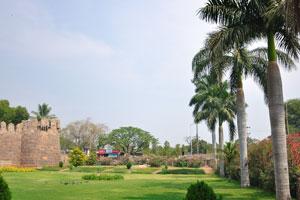 Королевские пальмы у входа в форт