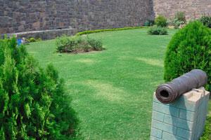 Зеленый газон у входа
