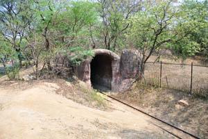 Туннель на железной дороге зоопарка