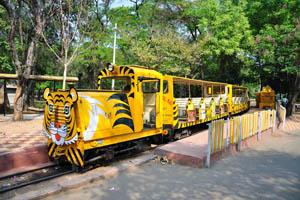 Желтый поезд зоопарка