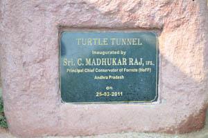 Черепашийа туннель, надпись