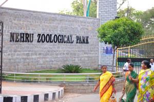 Название зоопарка написано на стене у входа