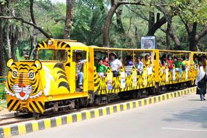 Поезд с туристами отправился в путешествие