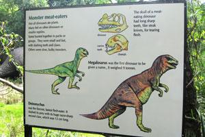 Монстры-мясоеды: Дейноничус и Мегалозавр