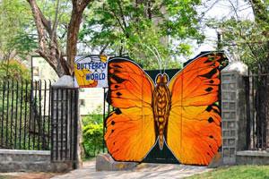 Вход в Мир бабочек