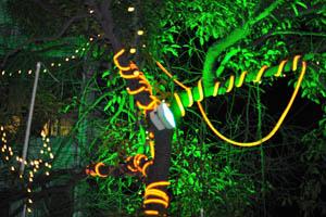 Свадебный и банкетный зал в Абидс: Электрические гирлянды
