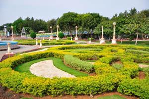 Крошечные кустарники как элемент ландшафтного дизайна