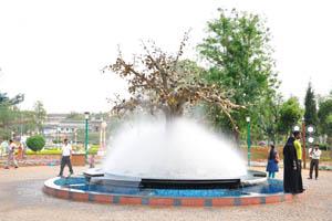 Туманный фонтан