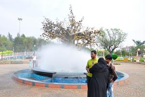 Красивый фонтан водяного тумана