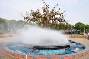 Волшебный фонтан тумана