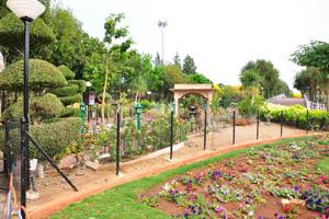 Ландшафтные кустарники и садовый мостик