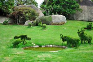 Сад-заповедник: чудесные птицы