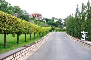 Дорога вдоль сада-заповедника