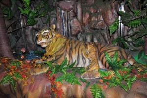 Филми Диния: тигр