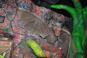 Борасура: неприятная летучая мышь большого размера