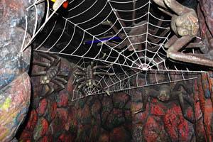 Борасура: страшные пауки