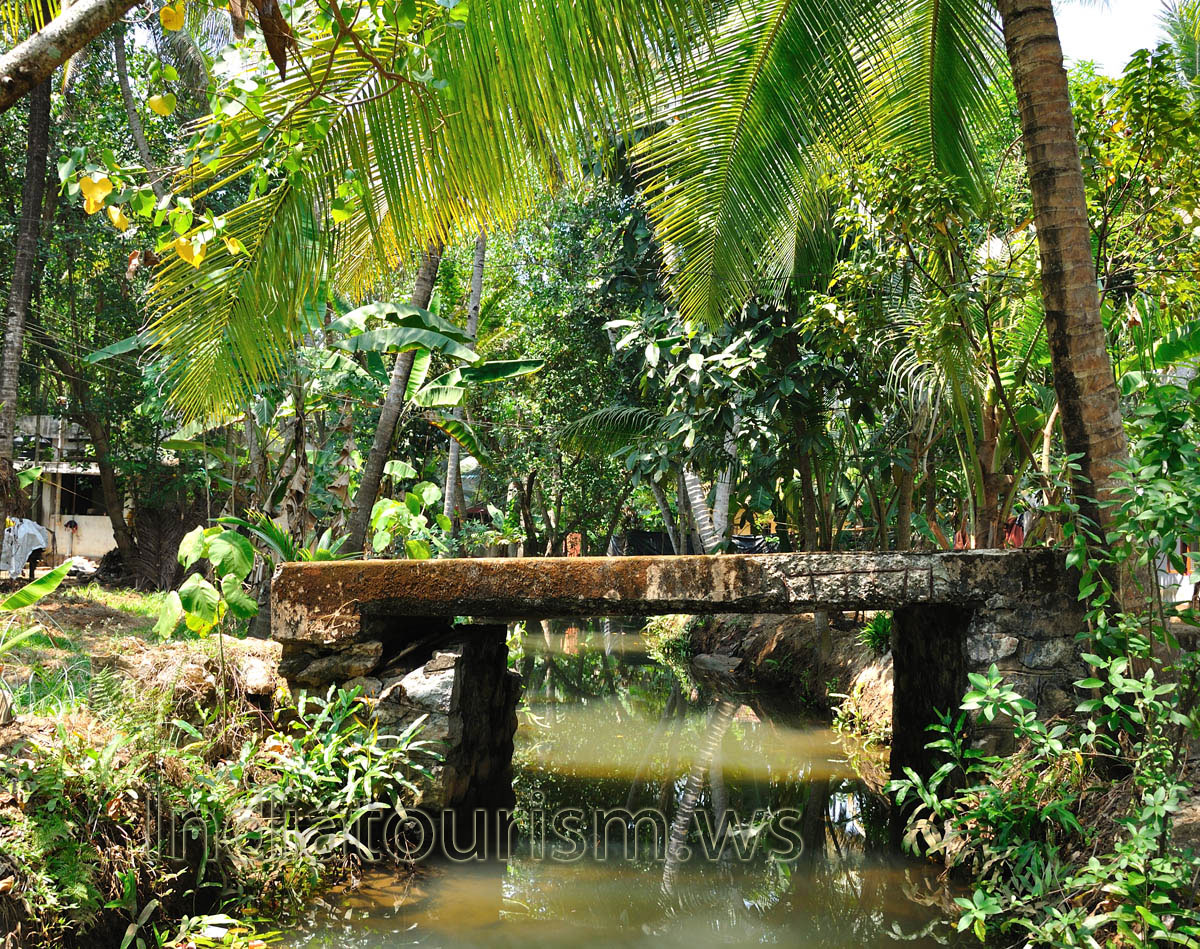 The Entire Journey Is A Moving Picture With Beauty Of Nature At Its Best Backwaters Kerala