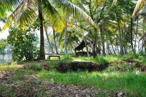 Каноэ в штате Керала это фантастический способ расслабиться