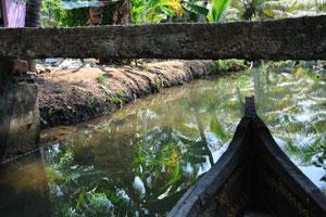 Вы не только будете наслаждаться катанием на каяках в штате Керала, но также окажетесь в дружелюбной окружающей среде