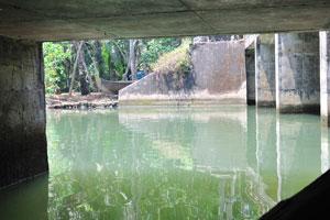 Сеть каналов и мостов