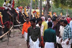 На фестивале, несмотря на то, что мы не слоны, нас фотографировали