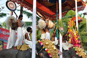 Париппалли Гаджамела проходит в Париппалли в храме Кодимутил Шри Бхадракали