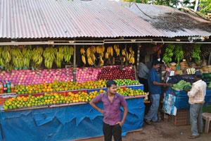 Продавцы фруктов