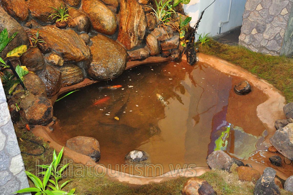 Small artificial pond aquarium thiruvananthapuram for Artificial pond