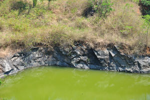 Зелёная вода озера