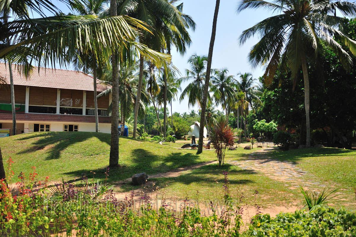 Одно из самых любимых туристами мест отдыха в Тируванантапураме это туристическая деревня Вели