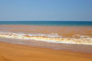 Оранжевое Аравийское море