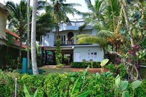 Частный дом и сад