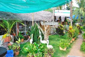 Туристический центр деятельности - воздушные путешествия, туры по заводям, Интернет-кафе