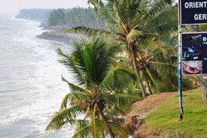 Кокосовые пальмы нависают над морем