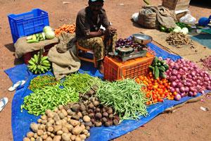 Продажа овощей в центре Варкалы