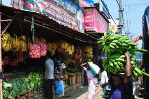 Бананы разных цветов в индийском штате Керала