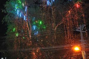 Храм «Джанардана Свами» украшен электрическими лампочками