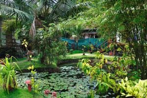 Пышная растительность аюрведического дома отдыха «Эдемский сад»