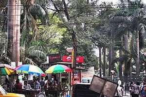 Путь к дороге Эй.Джи.Си. Бозе начинается от ст. метро Рабиндра Садан и идёт вдоль шоссе