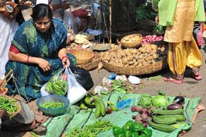 Женщина выбирает овощи для приготовления обеда