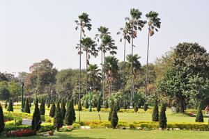 Каждый человек может найти очень красивые пейзажи внутри мемориала Виктории