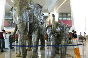 Искусственные слоны находятся рядом с секцией внутренних вылетов
