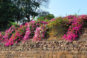 Удаягири также содержит фундамент какой-то структуры - пол выложен выровненными каменными блоками