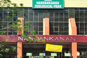 Вход в зоопарк Нанданканан